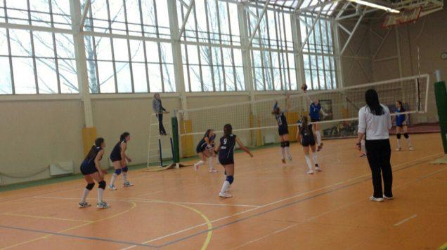 Первенство Московской области по волейболу